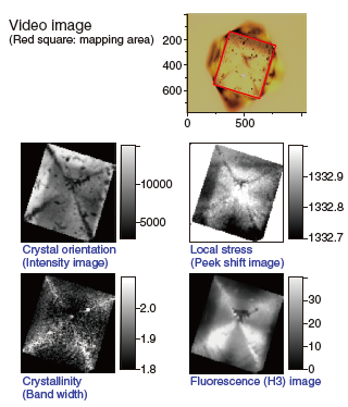 Figure 9 Raman images of diamond?Data Courtesy of M. Mermoux,