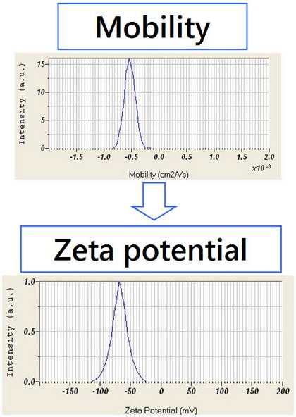 The known electric field and measured particle velocity allow for the calculation of particle mobility, and with choice of model, the zeta potential.